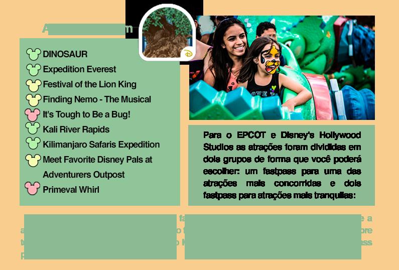 que-atrações-pegar-fastpass-no-animal-kingdom