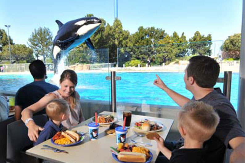 sea-world-tipo-de-restaurantes