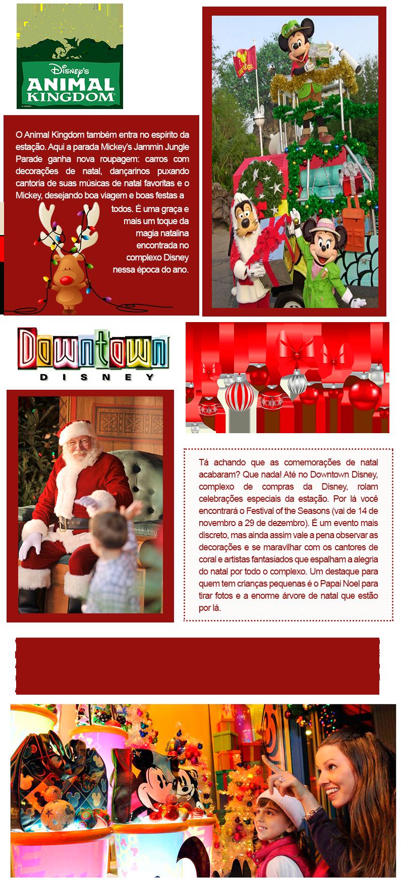 animal-kingdom-e-downtown-disney-comemoração-de-natal