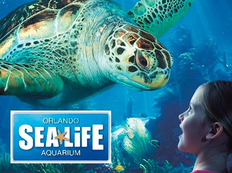 novo-aquário-em-orlando-dicas-orlando-2015