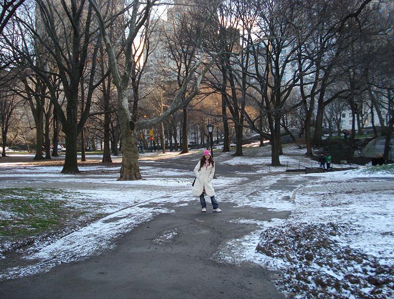 dicas-Nova-York-inverno-central-Park