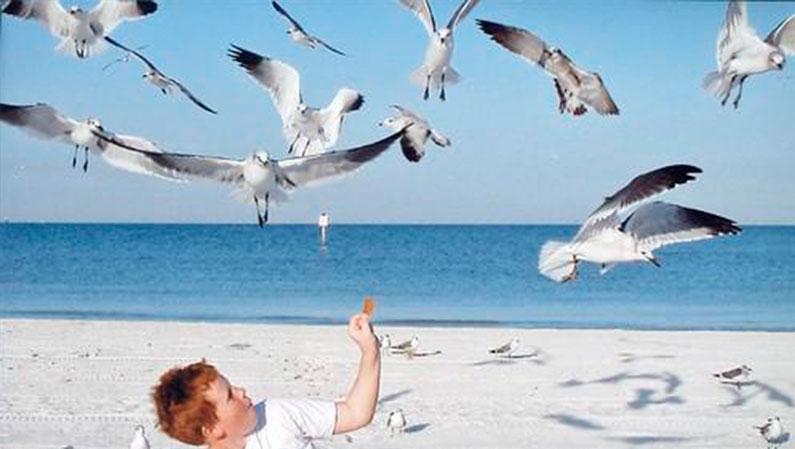 dicas-viagem-orlando-praias